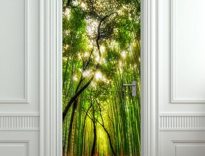 3d Door Skins Portfolio Categories Designer Walls And Floors